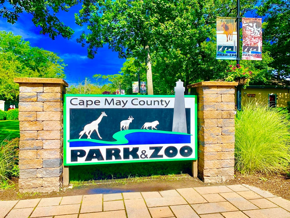 cape may county zoo local attractions at jersey shore